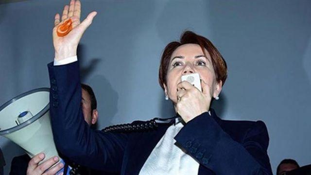 Akşener'in parti amblemi belli oldu iddiası