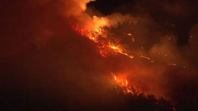 Bolu'da korkutan orman yangını
