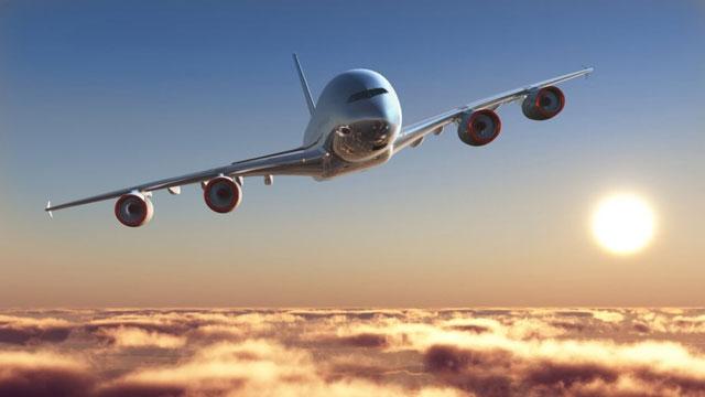 Havada aldatıldığını öğrenen kadın uçağı birbirine kattı