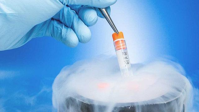 Türkiye'de yalnızca kanser hastaları yumurta ve spermlerini dondurabiliyor