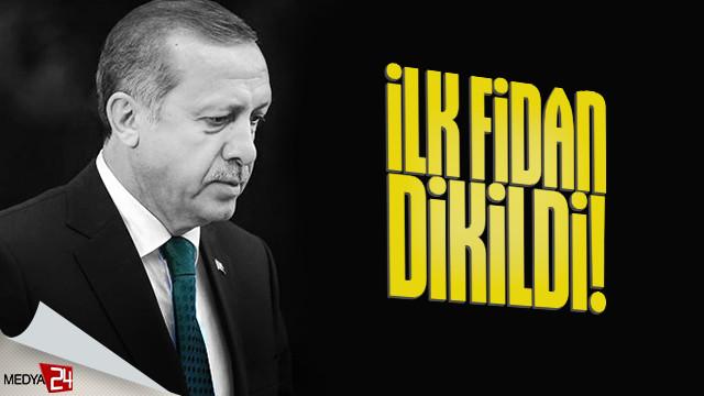 İlk fidan dikimi Cumhurbaşkanı Erdoğan'dan