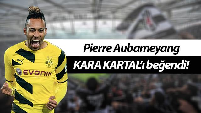 Beşiktaş'tan Aubameyang'a kanca