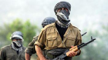 Oğlunu PKK'dan kurtarmak isterken öldürüldü
