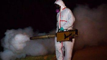 Chikungunya virüsü İtalya'yı tehdit ediyor