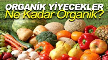 Organik Yiyecekler Ne Kadar Organik?