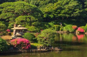 Turistten korkan görevli ulusal parkı zarara uğrattı