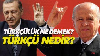 Türklük ve Türkçülük ne demek? Türkçü kime denir?