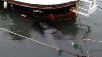 Beyoğlu Sahili'nde kadın cesedi bulundu