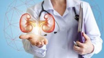 Böbrek sağlığı için nelere dikkat etmeliyiz