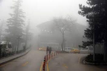 Bursa sis altında