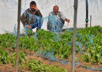 Zarar gören çiftçiye büyük destek