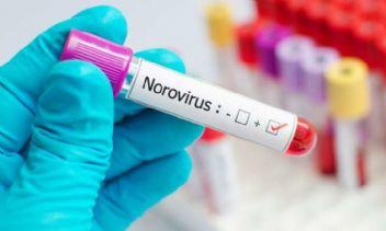 Salgının Sebebi Belli Oldu: Norovirüs