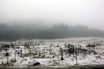 Bolu'da yüksek kesimlerde kar yağışı