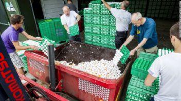 Avrupa'daki zehirli yumurta krizi büyüyor