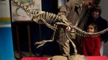 Dinozorların tarihi değiştirecek keşif